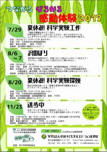 夏休み!科学実験探検 @ 市川市歴史博物館周辺の里山 | 市川市 | 千葉県 | 日本